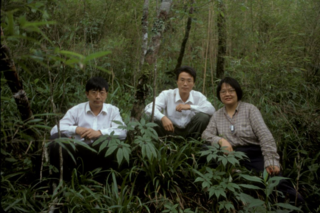 Jun Wen with colleagues H. Wan (left) and X. Chen (middle) on Mt. Wuyishan, Jiangxi Province, China, collecting wild populations of Panax sinensis J. Wen, ined. (a close congeneric relative of ginseng), in July 2001. Photo by Jun Wen.