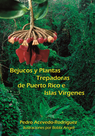 Acevedo book front cover