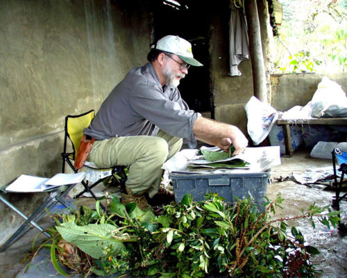 Laurence Dorr conducting field work in Guaramacal, Venezuela.