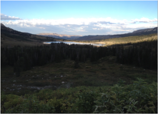 Manti-La Sal National Forest, 10,897 ft in elevation. Ferron Reservoir shines in the distance.