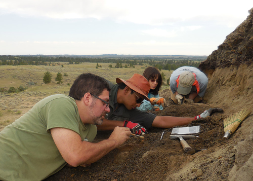 The team spreads along the hill to search for fossils in a newly-uncovered layer of rock.
