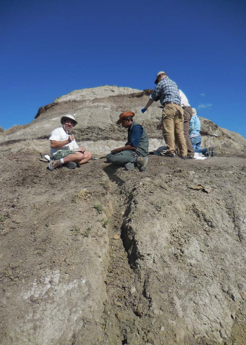 A vertical trench dug on the face of the hill provides access to unweathered rock for sedimentological analysis.