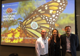 "Gary Krupnick, Catherine Werner, and Timothy Beatley discuss ""The Buzz About Urban Pollinators"" at a June 2017 program at the National Museum of Natural History. (photo by Barbara Stauffer)"
