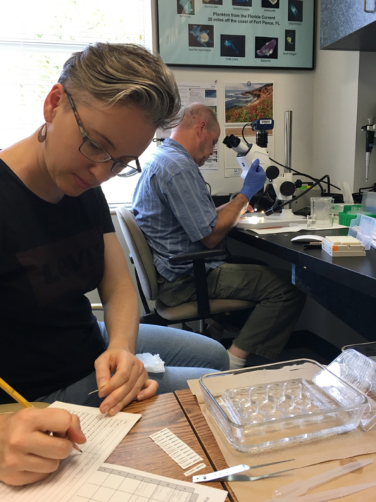 Kate Hansen and Michael Boyle imaging and processing copepods collected during the June 2017 StreamCode expedition.