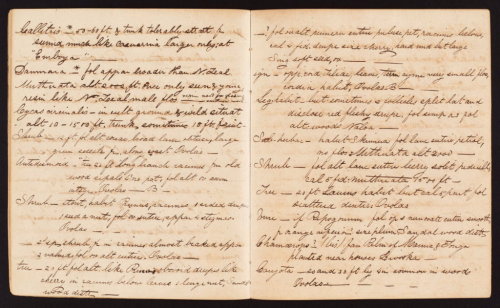 Brackenridge, William D.Original notebooks of the botanist, volumes 13 - 14, Fiji Islands group.(1838-1842)http://biodiversitylibrary.org/page/53612590.