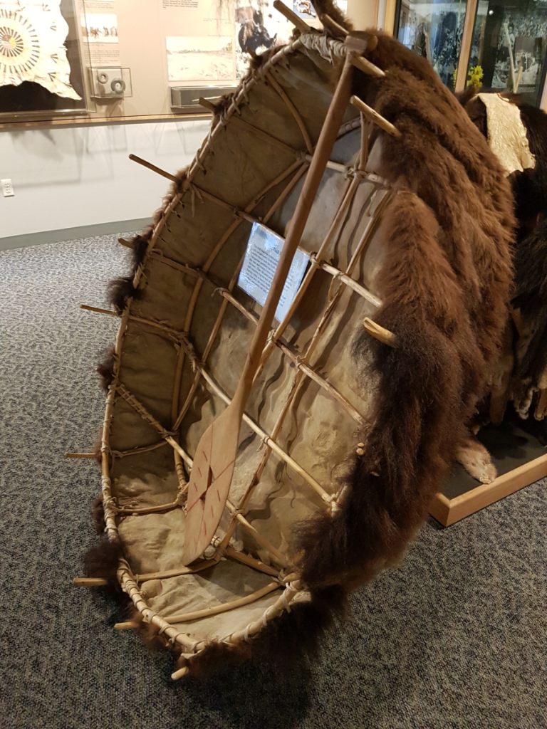 "A ""bull boat"" replica. These were made out of willow frames, covered with bison skin. Photo: Lotte Govaerts."