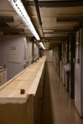 The old herbarium cases have been temporarily placed in the center aisle to make space for new metal cases. (photo by Ken Wurdack)