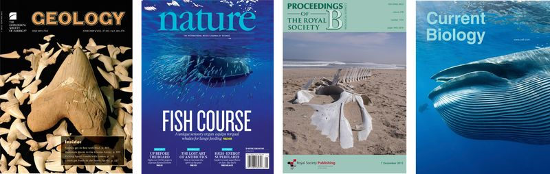 Cover pages3