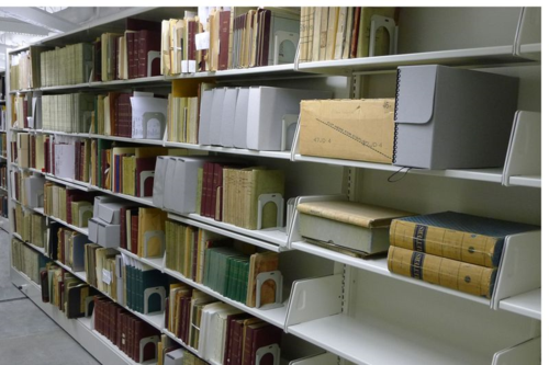 Botany field books in National Museum of Natural History library stacks, photo by Anna Friedman