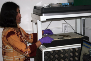 Shruti Dube prepares a plant specimen to be digitized.