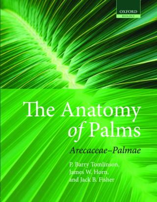 Tomlinson- anatomy palms