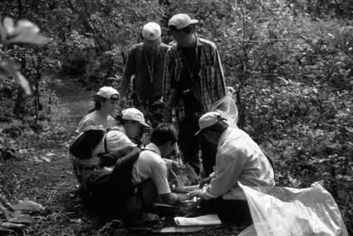 At a 1997 botanical workshop, a team of Smithsonian staff and Burmese students collect plants on Mt. Popa, Myanmar.  (Photo by W.J. Kress)