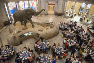 Guests gather in the Rotunda of the National Museum of Natural History for the closing dinner of the International Conference on Lycophyte & Fern Research. (photo by Ken Wurdack)