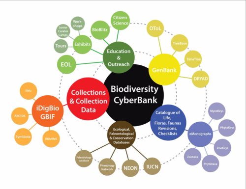 Vision of the Biodiversity CyberBank, an ambitious global community-wide cyberinfrastructure (from Wen et al. 2015).