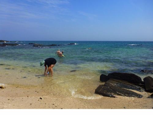 Collecting sediments for meiofauna along the coasts of Azuero Peninsula and Iguana Island, Panama. Photo by Ulf Jondelius