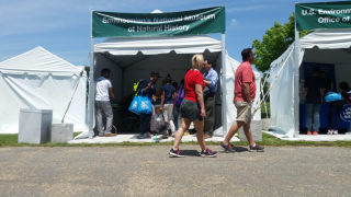 The National Museum of Natural History hosted a booth at the Biodiversity Festival. The booth featured three projects: Biocube, eMammal, and Leafsnap.