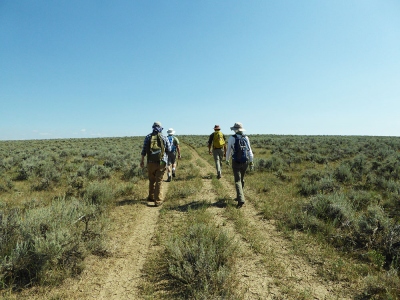 Four members of the team hike toward the site along a dirt track.