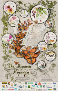 The Monarch Highway is the focus of the 2017 Pollinator Week poster