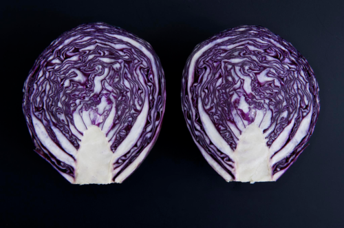 Red Cabbage (retrieved from Wikimedia Commons)