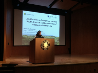Using the pollen and leaf fossil record, Mónica Ramírez-Carvalho describes the floristic composition of Late Cretaceous forests in northern South America and she evaluates the impact of the end-Cretaceous mass extinction on these early tropical forests. (photo by Gary Krupnick)