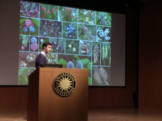 Andrew Leslie uses a combination of fossil data, ancestral state reconstructions, and models of character evolution to illustrate how the appearance of specialized animal seed dispersal strategies played a large role in the evolution of modern conifer cone diversity. (photo by Gary Krupnick)