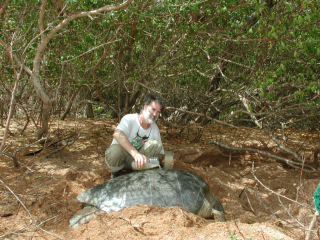 Tom Hollowell at Shell Beach, Guyana (2001).