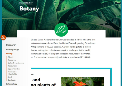 Navigation of the newly redesigned Department of Botany website at https://naturalhistory.si.edu/research/botany begins with the orange circle on the left of the screen.