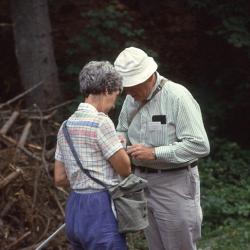 Flinto_hydro261 2 Trichoptera Symposium 5_1986