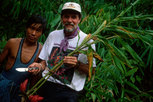W. John Kress collecting plant specimens in a Costa Rican rainforest. (photo by Smithsonian Institution)