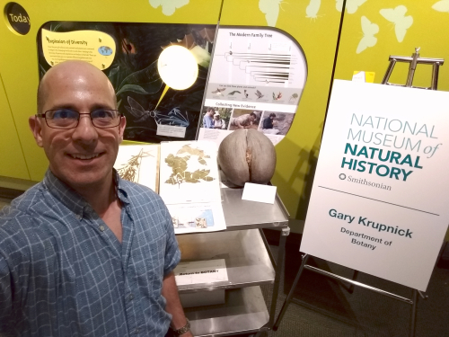Gary Krupnick readies his station of botanical specimens in preparation for the 2019 Smithsonian Congressional Night at the National Museum of Natural History. (photo by Gary Krupnick)