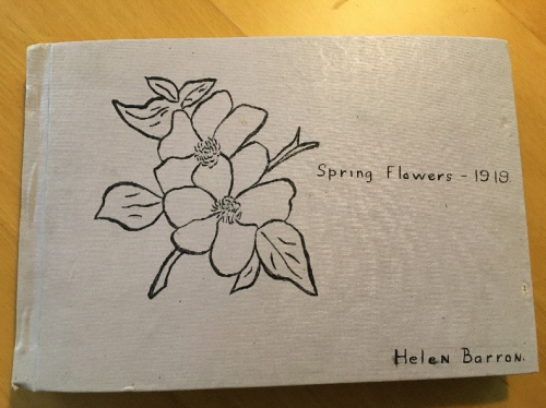 Helen Barron's herbarium book, Spring Flowers-1919. A hand drawn dogwood graces the cover. (photo by Sue Lutz)