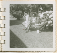 A 1950s photograph of three women from the Taylor family posing in a yard in Martha's Vineyard, with a hydrangea bush behind them. Collection of the National Museum of African American History and Culture.
