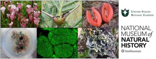 2021 Smithsonian Botanical Symposium