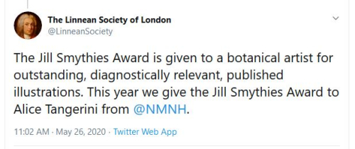 In May, the Linnean Society of London announced via Twitter that Alice Tangerini is the recipient of the 2020 Jill Smythies Award. https://twitter.com/LinneanSociety/status/1265297204677402626