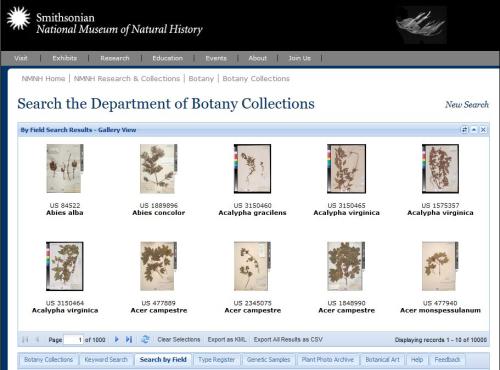 The Botany Catalog