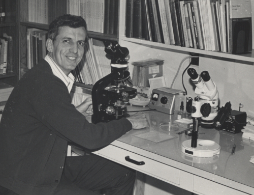 Robert Ireland at work in the herbarium at the Canada Museum of Nature in 1972.