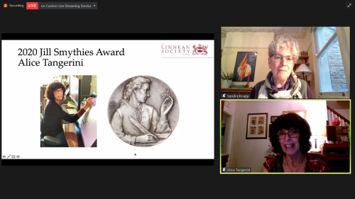 Sandra Knapp, president of the Linnean Society, presents the 2020 Jill Smythies Award to Alice Tangerini during the Society's virtual medals ceremony on 24 May 2021.